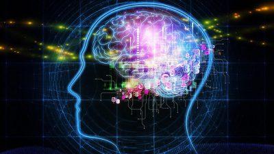 Nörolojik Bilimlerde Beyin Anlayışı