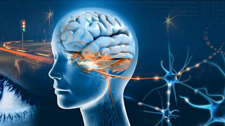 Nöropsikoloji'ye Uzanan Yol