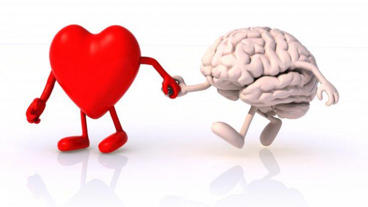 Aşkın Nöral Temelleri